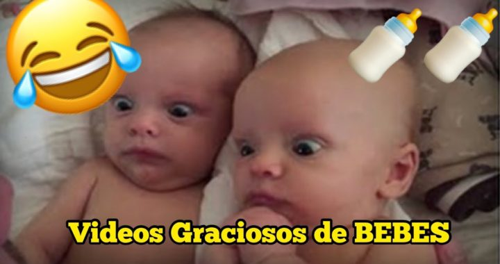 RECOPILACIÓN VIDEOS GRACIOSOS DE BEBES—The funny
