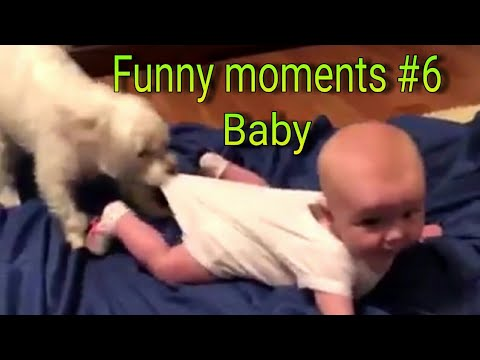 Videos De Bebes Graciosos 2019 Funny Moments #6  Babies laugh playing with dogs