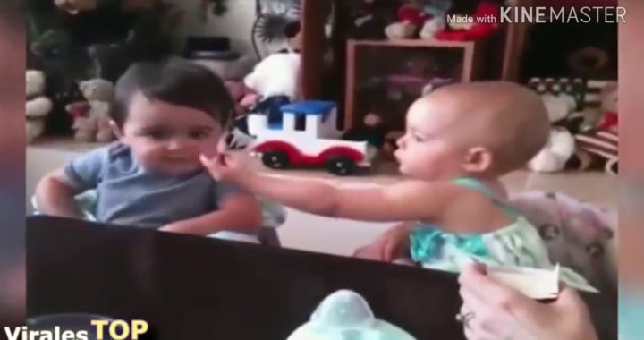 Videos de bebés graciosos 2018 videos de bebé chistosos  2019